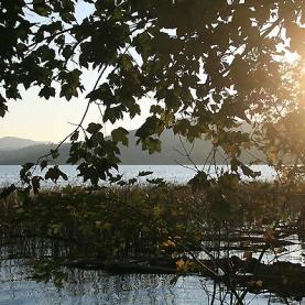 Spätnachmittag Ende Oktober am Laacher See.