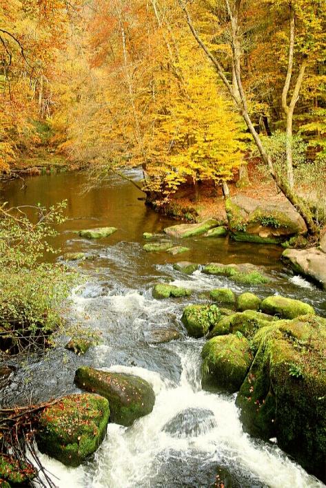 Die Irreler Wasserfälle in der Südeifel.