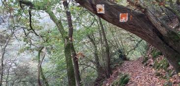 """Typisch für das Wegemanagement: der """"Traumpfade"""": Schmale Pfade am Berghang und klare Markierung."""