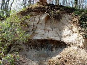 Aufschluss in zwei Erdzeitalter oberhalb von Tönisstein: Oben die waagerechten Trassschichten aus dem Vukanausbruch am Laacher See vor 13.000 Jahren, darunter Schiefer in der Vertikalen, bis zu 350 Millionen Jahre alt.