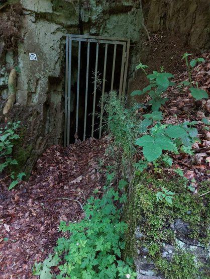 Geologisch-Montanhistorischer Lehrpafd: Zugang zu einem einstigen Erzabbaustollen am Reifferscheider Bach.