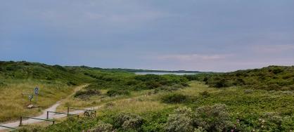 Hammersee von der Domäne Loog aus gesehen.