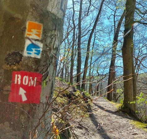 Aufstieg zum Limesturm oberhalb von Sayn (Foto Frühjahr 2020).