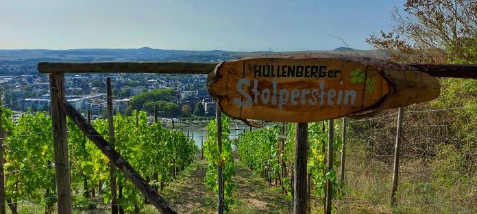 """Die Weinlage """"Hüllenberger Stolperstein""""."""