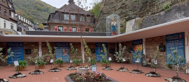 """""""Das Jahr des Apfels"""" im Innenhof des Klosters mit Pflänzlingen alter Apfelsorten und Legenden und Erzählungen zum Apfel. Der """"Apfelheilige"""", der Eifelapostel Hermann Josef, der in der Basilika von Kloster Steinfeld beigesetzt ist, wird auch erwähnt."""