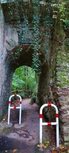 So fing es an: Zugang zum Trampelpfad durchs Bienhorntal in Pfaffendorf.