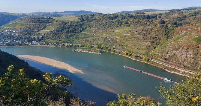 Sandbank und Tauberwerth im Rhein unterhalb von Oberwesel.