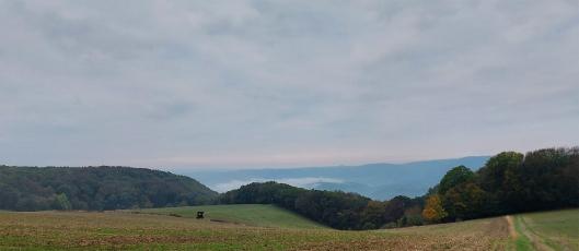 Entlang den Wiesen oberhalb von Lykershausen.