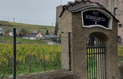 """Monopol direkt am Straßenrand in Rüdesheim mit dem Design eines burgundischen Clos: Die """"Großes Gewächs""""-Lage Rüdesheimer Rosengarten von Leitz."""