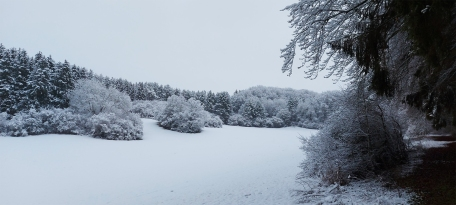 """Bolsdorfer Tälchen"" im Winter (1.1.2021)."